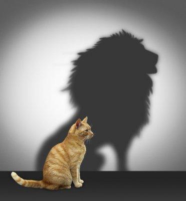 Hãy Vui Sống - Tự tin là gì? Làm sao để tự tin?