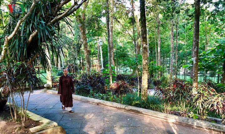 Kham pha ngoi co tu noi thien su Thich Nhat Hanh tinh duong-Hinh-4
