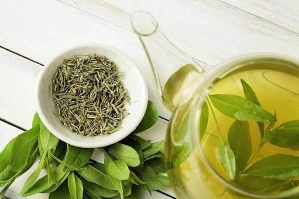 Thực phẩm tốt cho phổi: Trà xanh